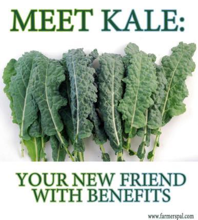 meet-kale